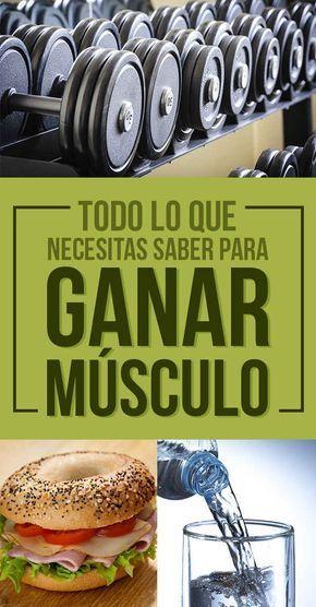 Todo lo que necesitas saber para ganar músculo