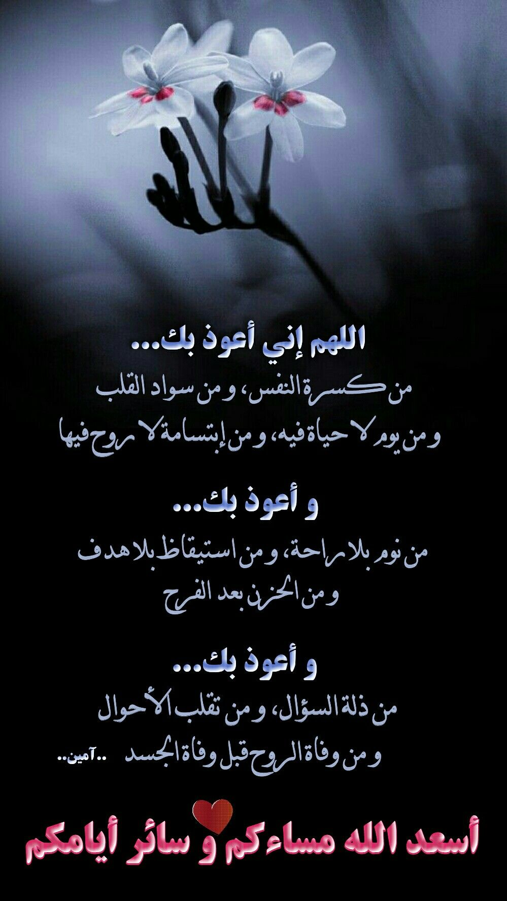 Pin By Ameer On صباحيات و مسائيات Quotations Good Evening Quotes