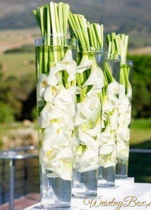 Wrzesien Dekoracje Weselne Szukaj W Google Calla Lily Flowers Calla Lillies Floral Arrangements