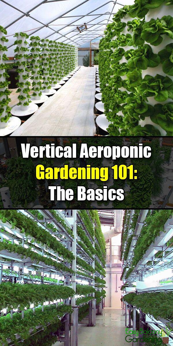 Photo of Vertical Aeroponic Gardening 101: The Basics – Easy Balcony Gardening