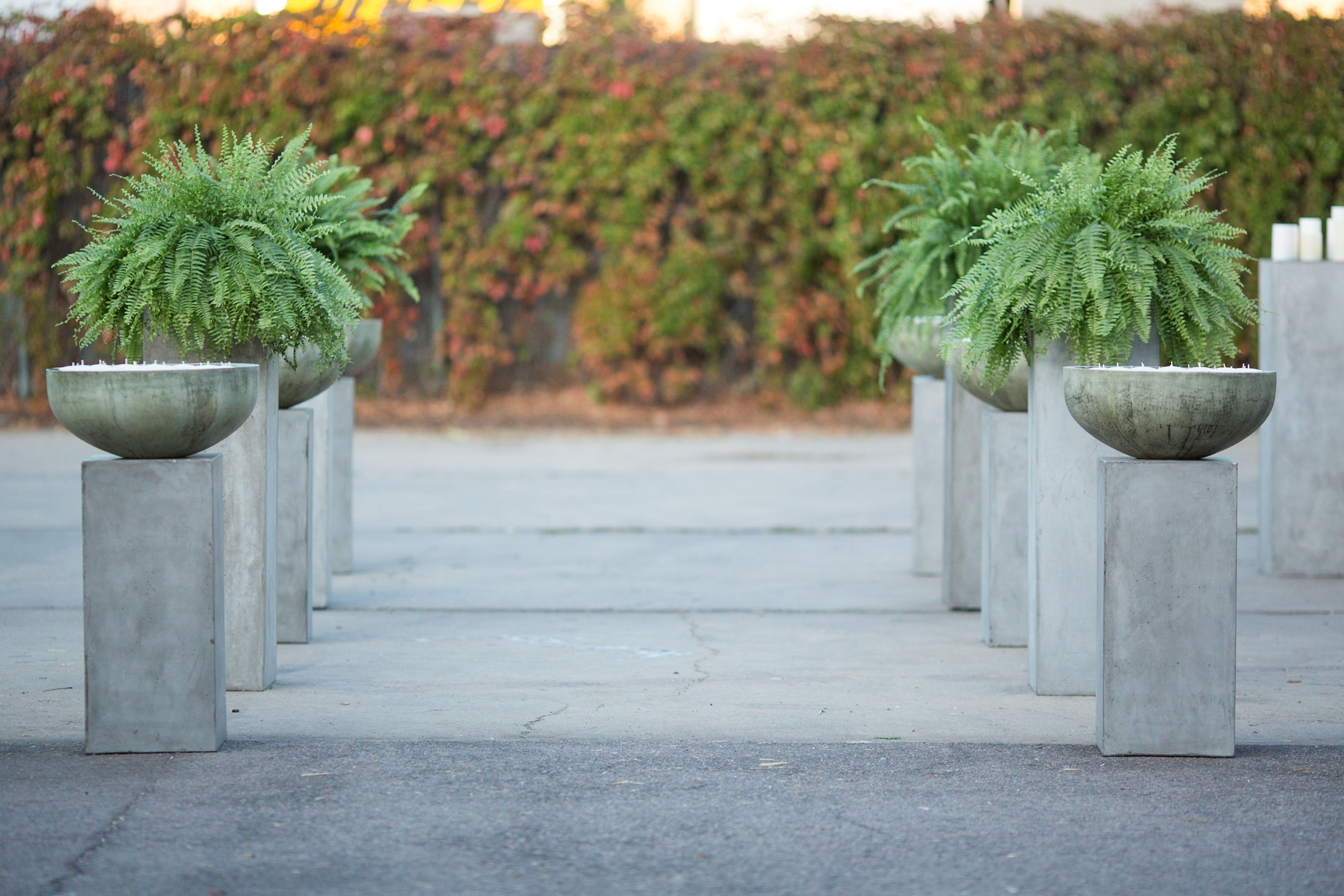 Cement urns, fern accents, and floating candle entrance.  Event design and rentals provided by Eclectic Hive.