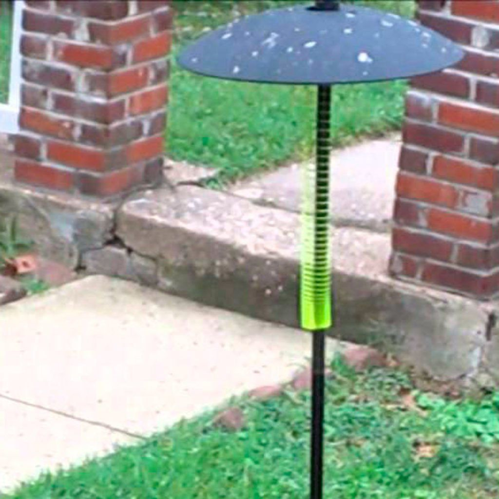 how to squirrel proof bird feeder with slinky
