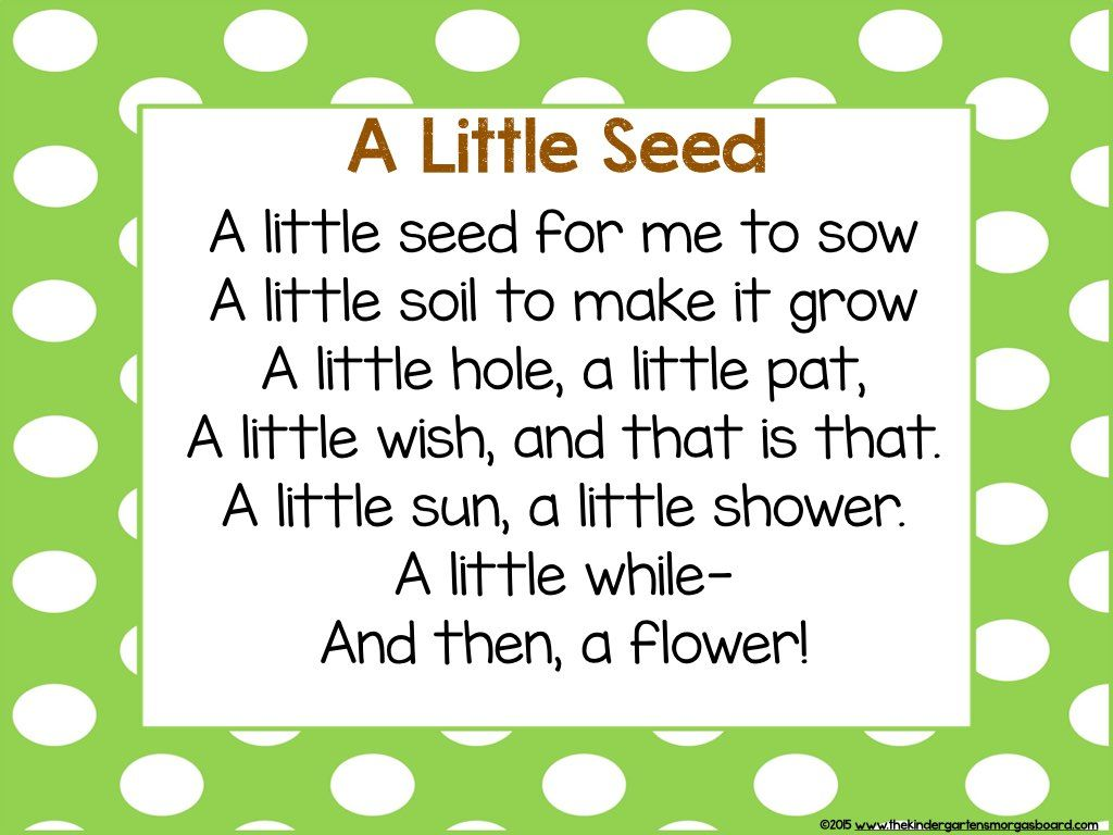 Search The Kindergarten Smorgasboard Pinterest Poem Plants