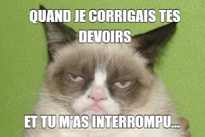 Meme En Francais Google Search Funny Grumpy Cat Memes Grumpy