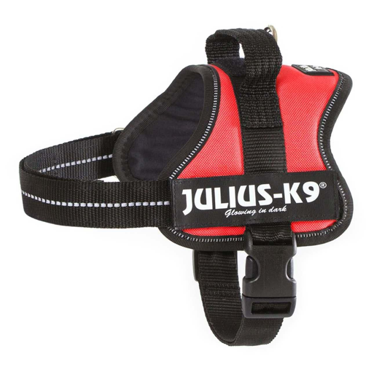 Need A New Dog Harness With All The Bells And Whistles Julius K9
