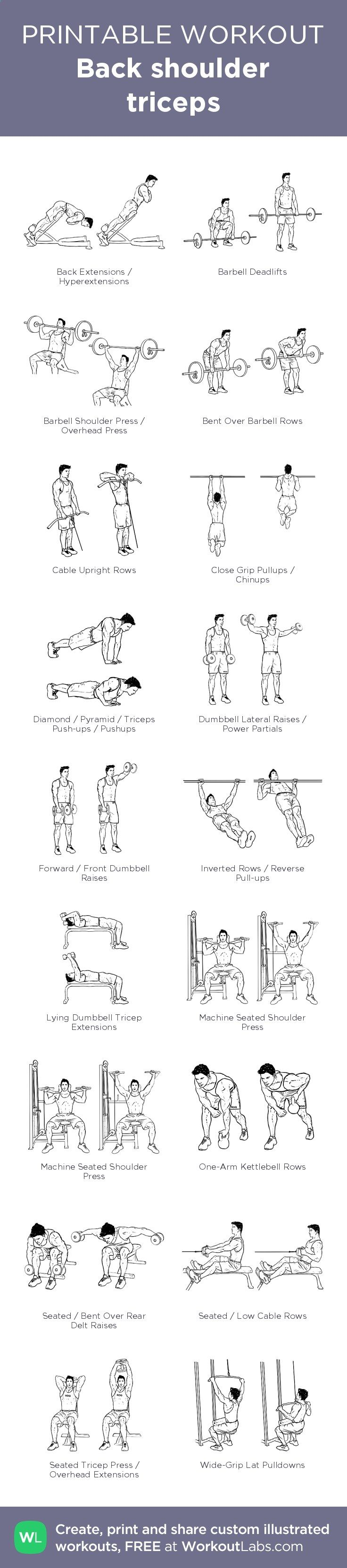 Back shoulder triceps – illustrated exercise plan created at ...