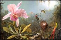 Skin Biology info on BioActives, Plant extracts and Fairy Dust in Skin Care.  Art: Martin Johnson Heade - Cattelya Orchid and Three Brazilian Hummingbirds, 1871