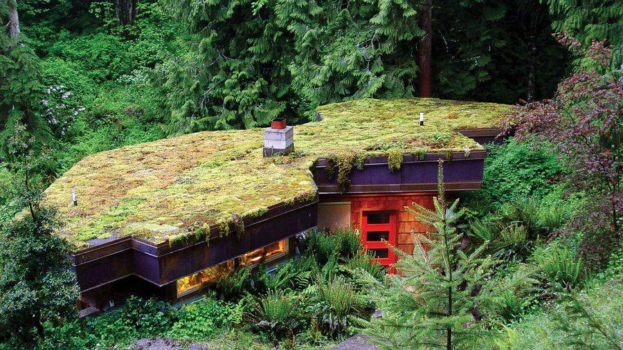 Gorgeous Green Roof Ideas Green Roof Garden Roof Garden Small Space Gardening