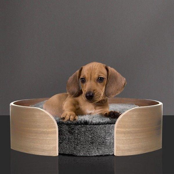 Rigolo de la d co pour nos animaux bonheur chiots Panier design pour chien
