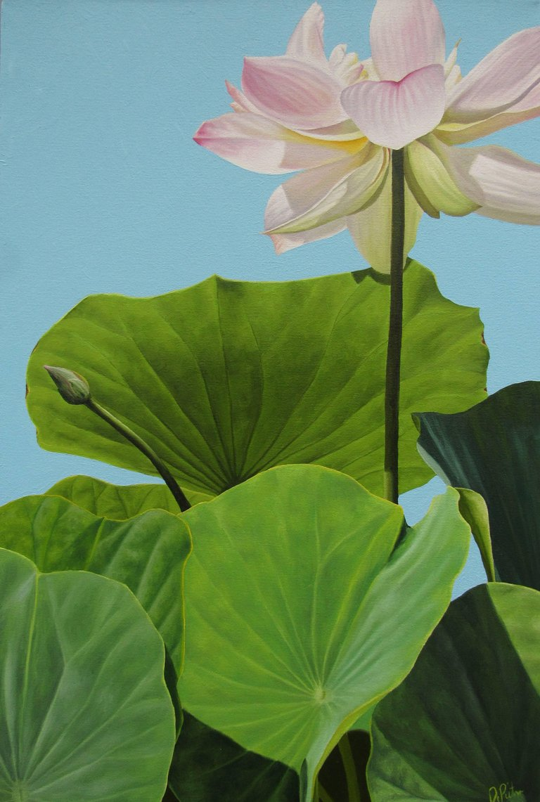 Frank Depietro Lotus No 10 Hard Edge Realist Painting Of White