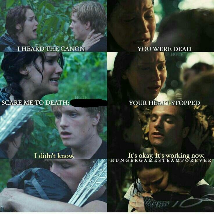 It S Working Now In 2020 Hunger Games Quotes Hunger Games Hunger Games Peeta