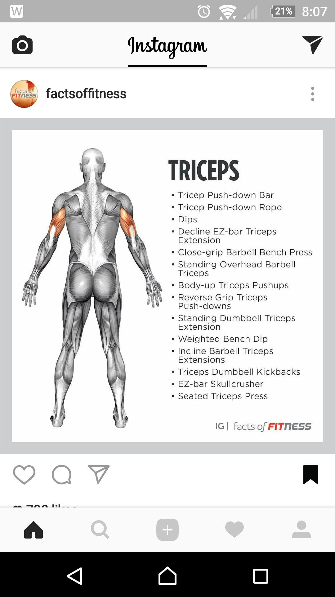 Pin by Michael Wright on Anatomy | Pinterest | Workout, Exercises ...