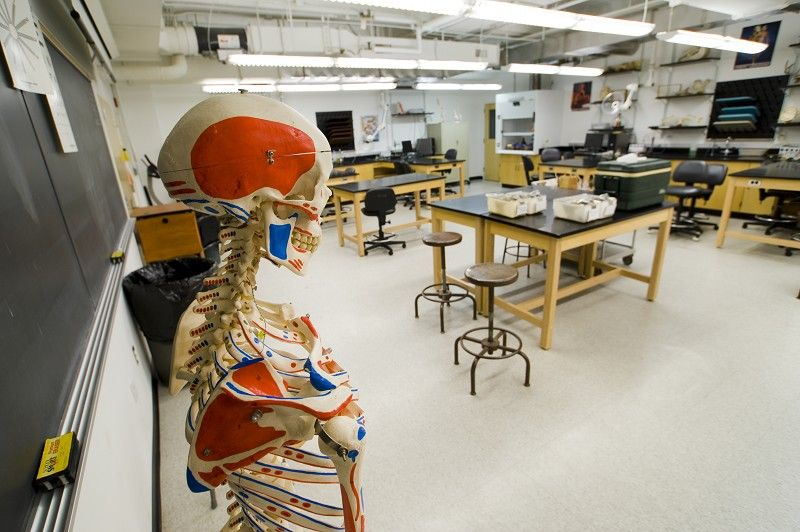 Anatomy and Physiology lab in Magruder Hall | Campus Photos ...
