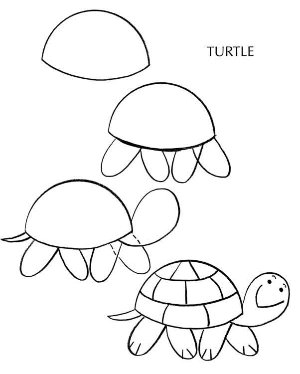 How to draw a turtle ✏ site includes, pets: dogs, cats, birds, fish ...