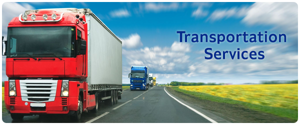 Roadrunner on Ocean freight, Truck driving jobs