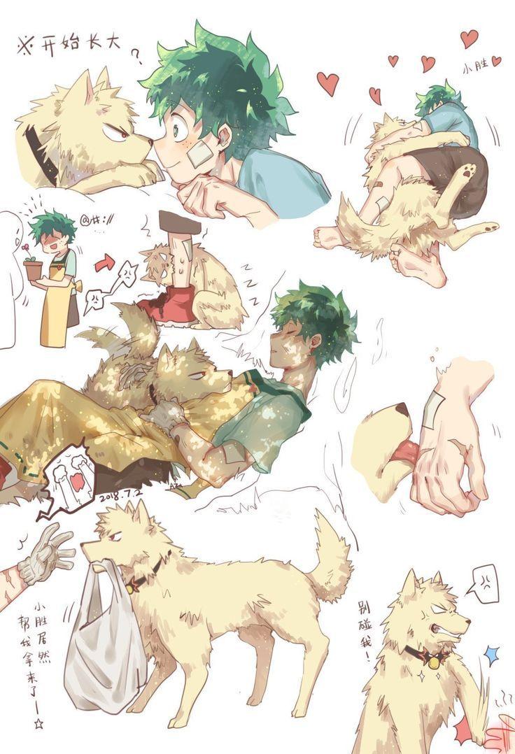 Katsuki Bakugou Dog And Midoriya Izuku Boku No Hero Academia My Hero Academia Episodes Boku No Hero Academia My Hero