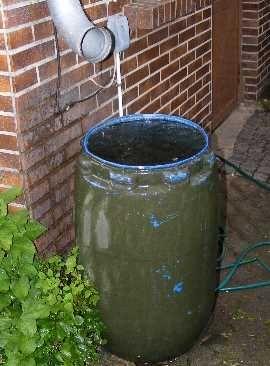 Regenwasser Sammeln Mit Regentonne Gardening Pinterest Garden