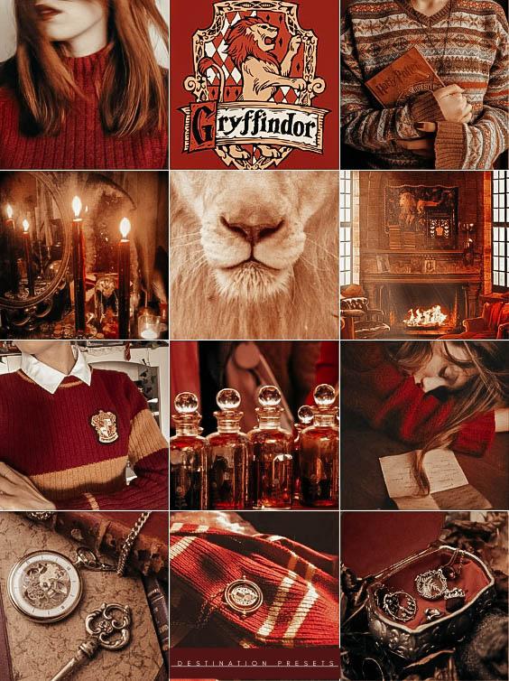 Gryffindor Gryffindorpride Aesthetic Red Gold Harry Potter Aesthetic Harry Potter Funny Gryffindor Pride