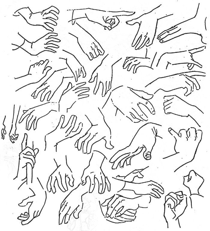 Animopus: Hand Poses Galore! || CHARACTER DESIGN ...