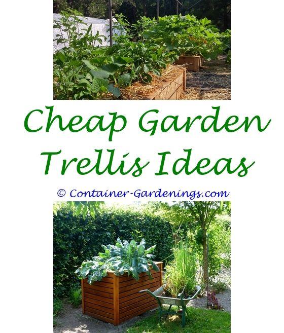 Home Vegetable Garden | Garden ideas, Dish garden and Natural garden