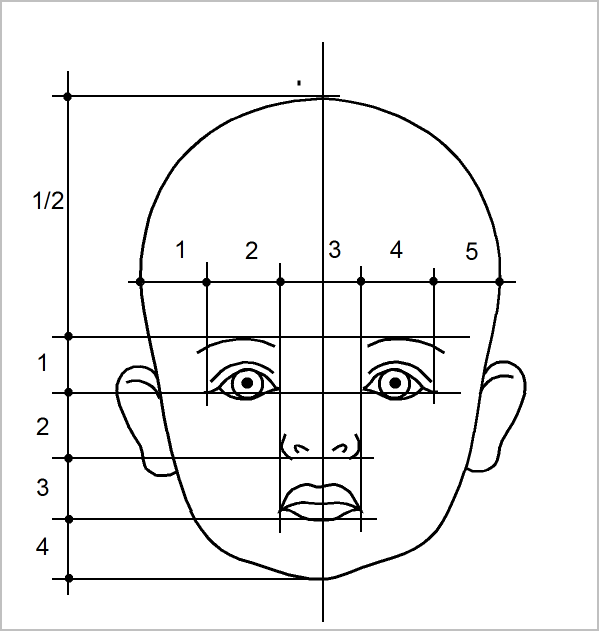 Face dimensions of a child in 2020 | Baby face drawing ...