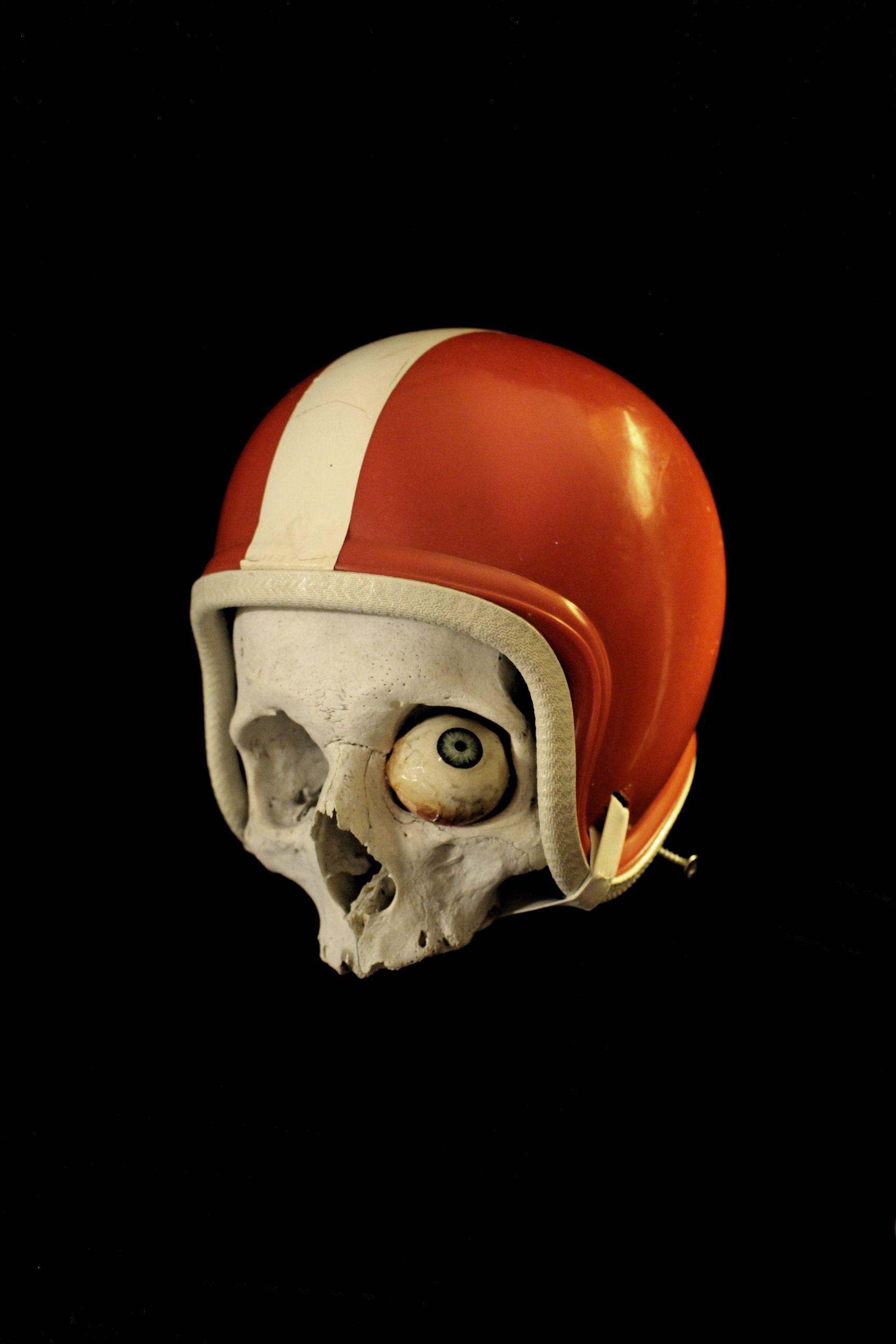 Pin By Alex Molina On Cranes Skull Painting Skull Art Skull Reference
