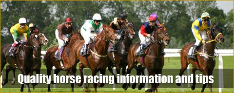 Clever tips betting horses betting ufc 148