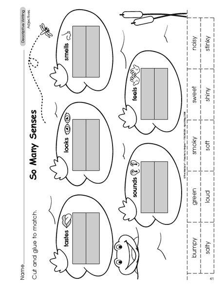l 1 5 classify and categorize by 5 senses 1st grade reading pinterest language. Black Bedroom Furniture Sets. Home Design Ideas