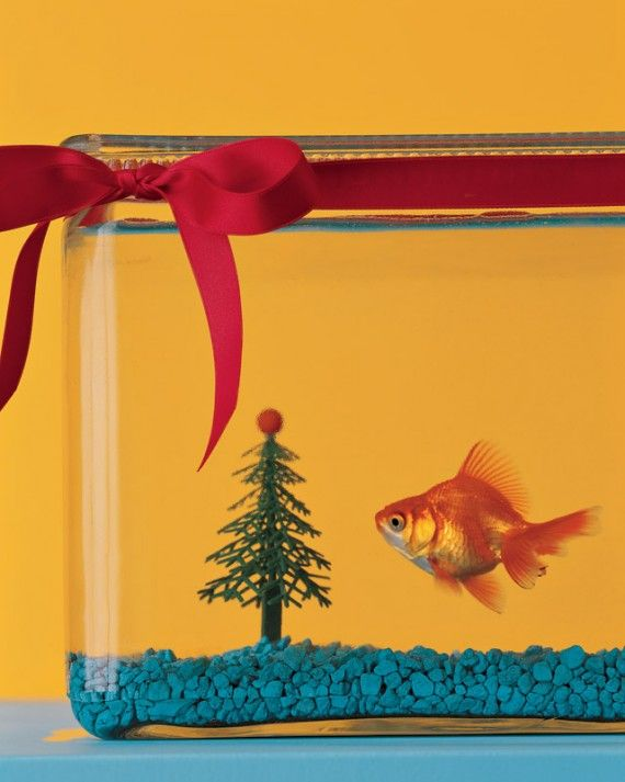 How To Decorate Your Aquarium For The Holidays Fun sites - halloween fish tank decorations