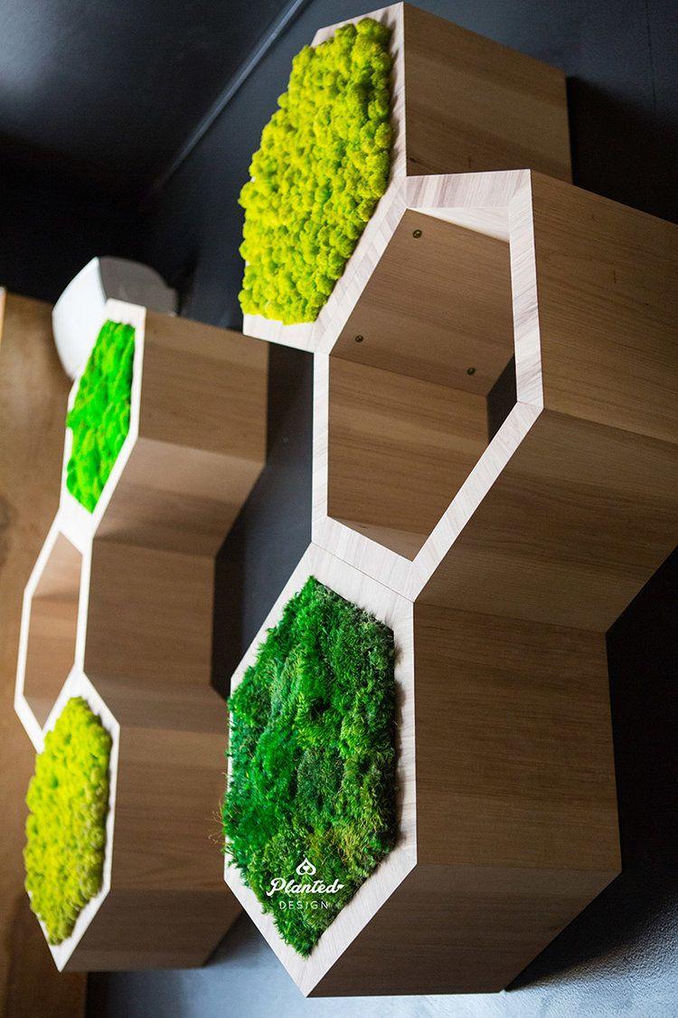Gallery Planted Design Green Wall Design Green Wall Decor