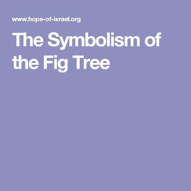 The Symbolism Of The Fig Tree Bible College Notes Pinterest