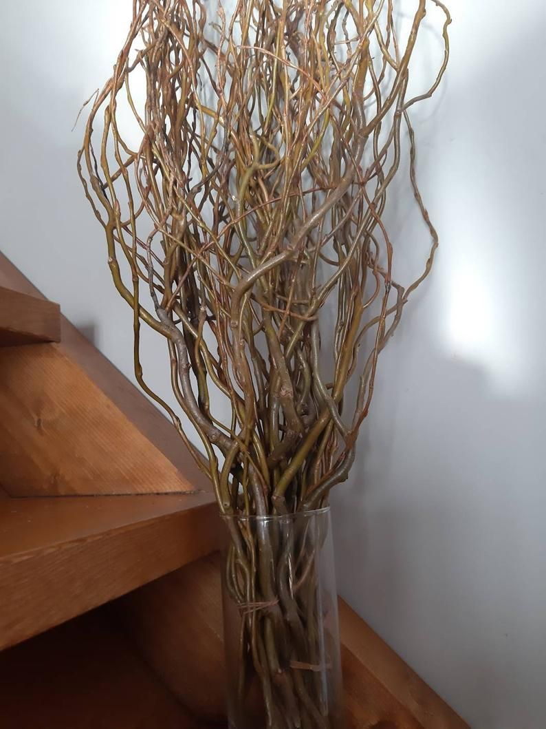 Long Twigs Approx 30 Twisted Willow Bunch Enchanting Curly Twigs Branches Wedding Centerpiece Table Decor Hazel Tree Twigs Branch Centerpieces Wedding Wedding Branches Wedding Table Centerpieces