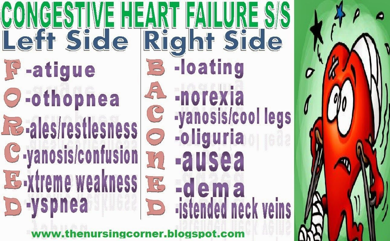 Congestive Heart Failure Signs And Symptoms Mnemonic  The. Odbc Sql Server 2008 Driver Working At Pimco. Cleveland Clinic Pediatric Cardiology. Naomi Campbell Hair Loss Mailing List Vendors. Free Internet Business Opportunity. Business Intelligence Practice. How To Ipad App Development Pics Of Mazda 6. Bank Of America Business Loan. Occupational Therapist Training