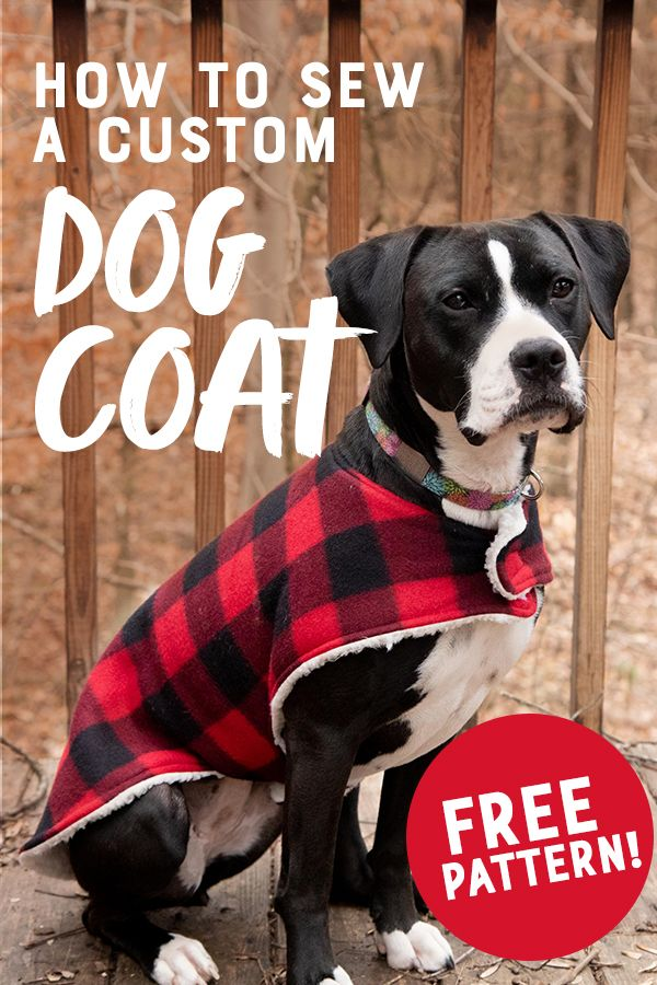 How to Sew a Cozy Custom Dog Coat in Less than an Hour #beginnersewingprojects