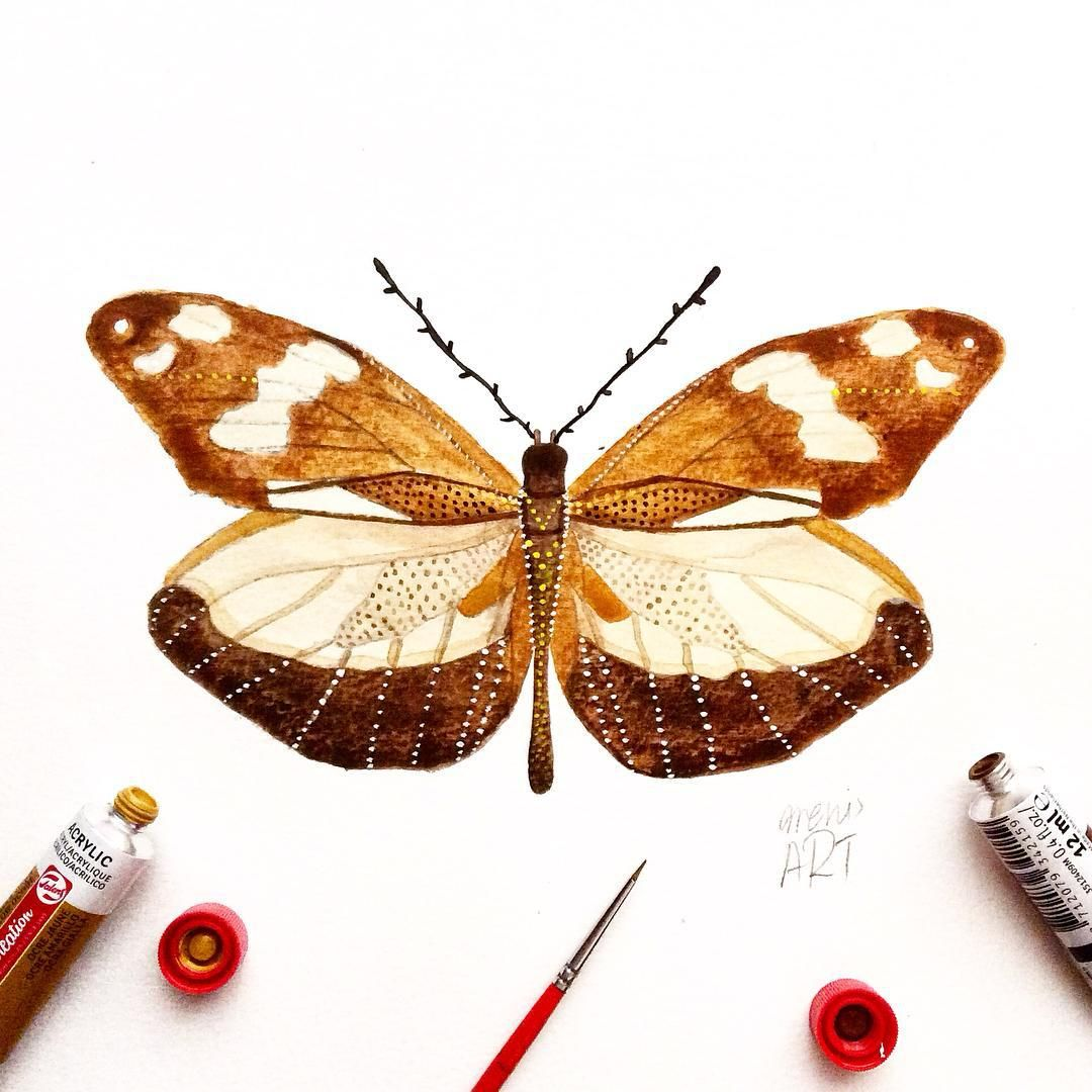 """Day 26 of my challenge #100daybutterflies #100daychallenge inspired by """"Dismorphia Crisia"""" can be found from Northern Central America to Bolivia and Amaxonia. #arts_help #art_empire #imaginationarts #artdaily #art_spotlight #challenge #art  #illustration #butterfly #handdrawnart #valleyofbutterflies #nature #phooftheday #doodle #love #bw #rtistic_feature #featuregalaxy #creative_instaarts  #me #worldbutterflies #happy #watercolor #acrylic #paint #artist_sharing #phanasu #painting"""