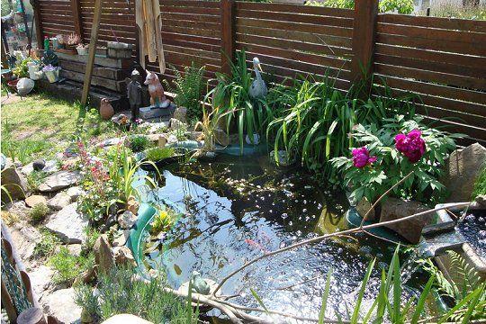 Un bassin préformé entouré de pierres plates Gardens