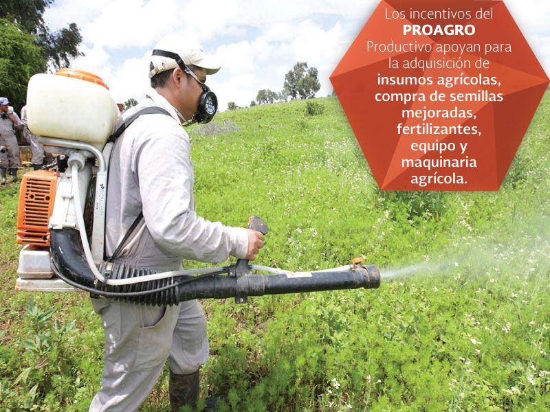 Los incentivos del PROAGRO productivo apoyan para las adquisiciones de insumos agrícolas,compra de semillas mejoradas,fertilizantes, equipo y maquinaria agrícola.SAGARPA SAGARPAMX