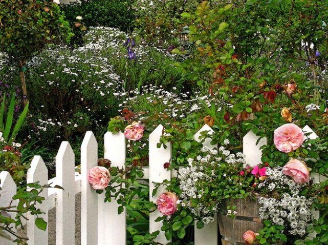 Jardin anglais gallery flower garden pinterest for Jardin en anglais