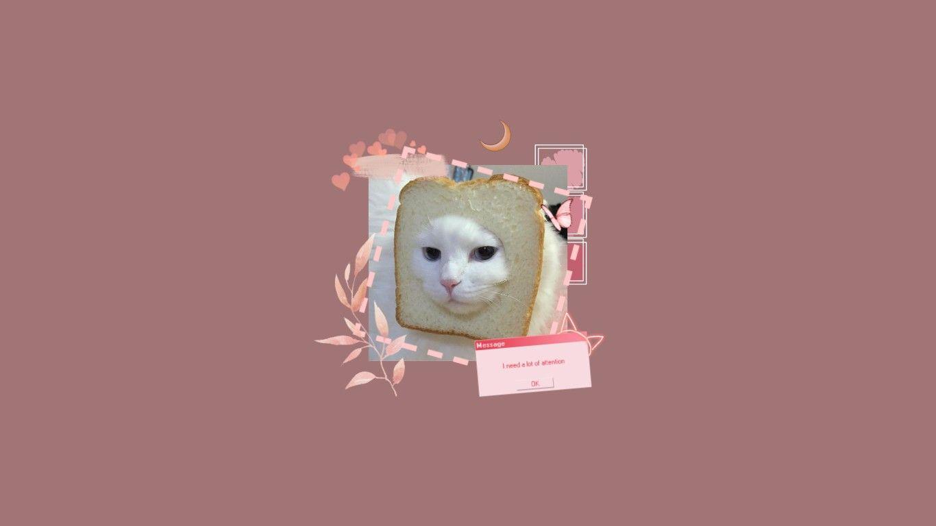 Pink Cat Aesthetic Wallpaper For Desktop Windows Mac Etc Di 2020
