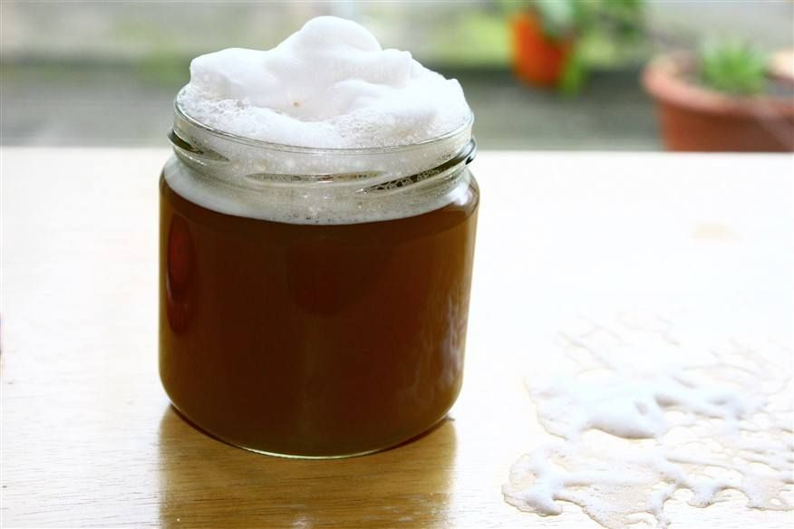 4 homemade shampoos for hair loss save your hair with