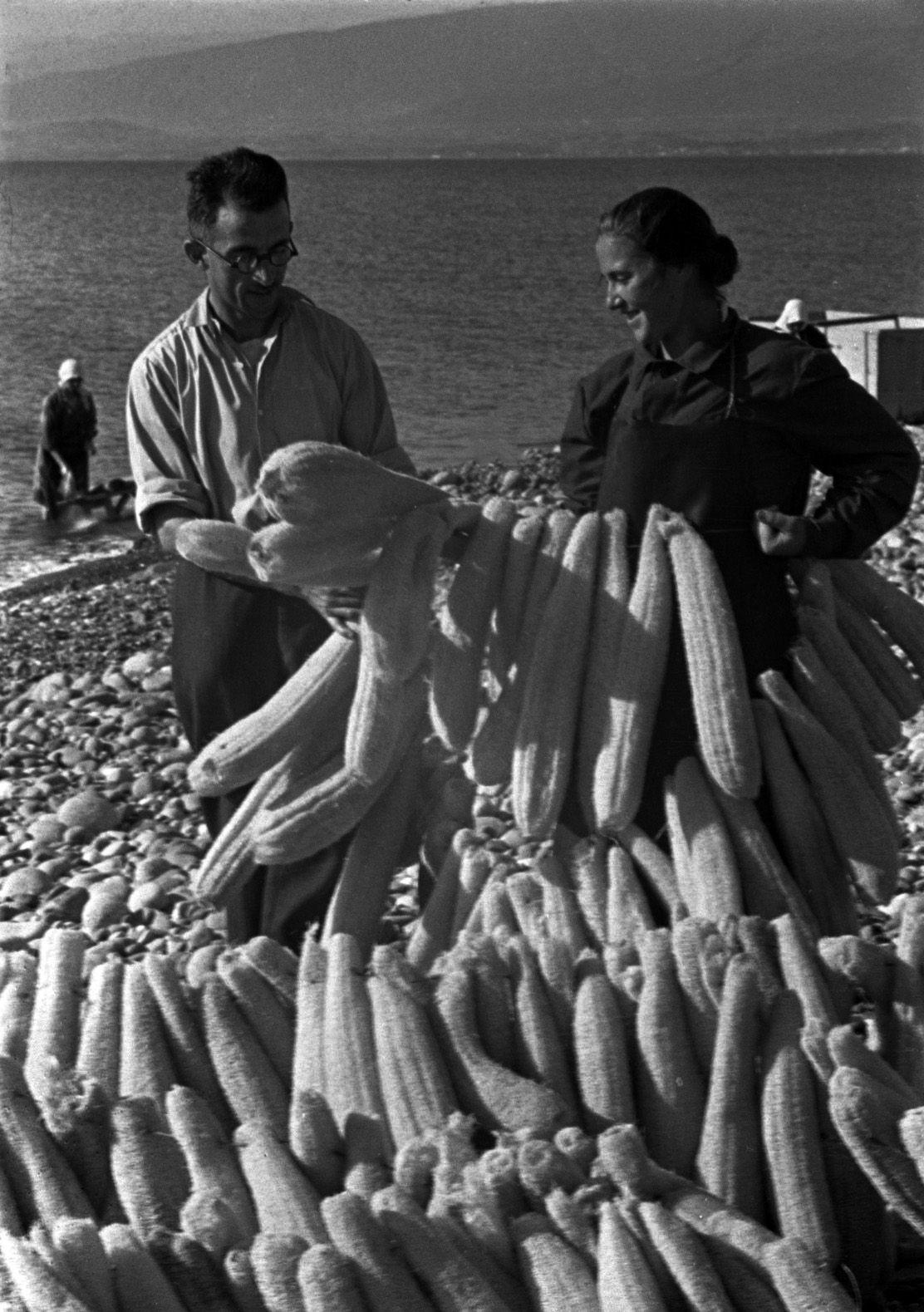 Loofah sponge seller, 1938. Black Sea coast. Sukhumi. Abkhazia-Georgia, ex-USSR.