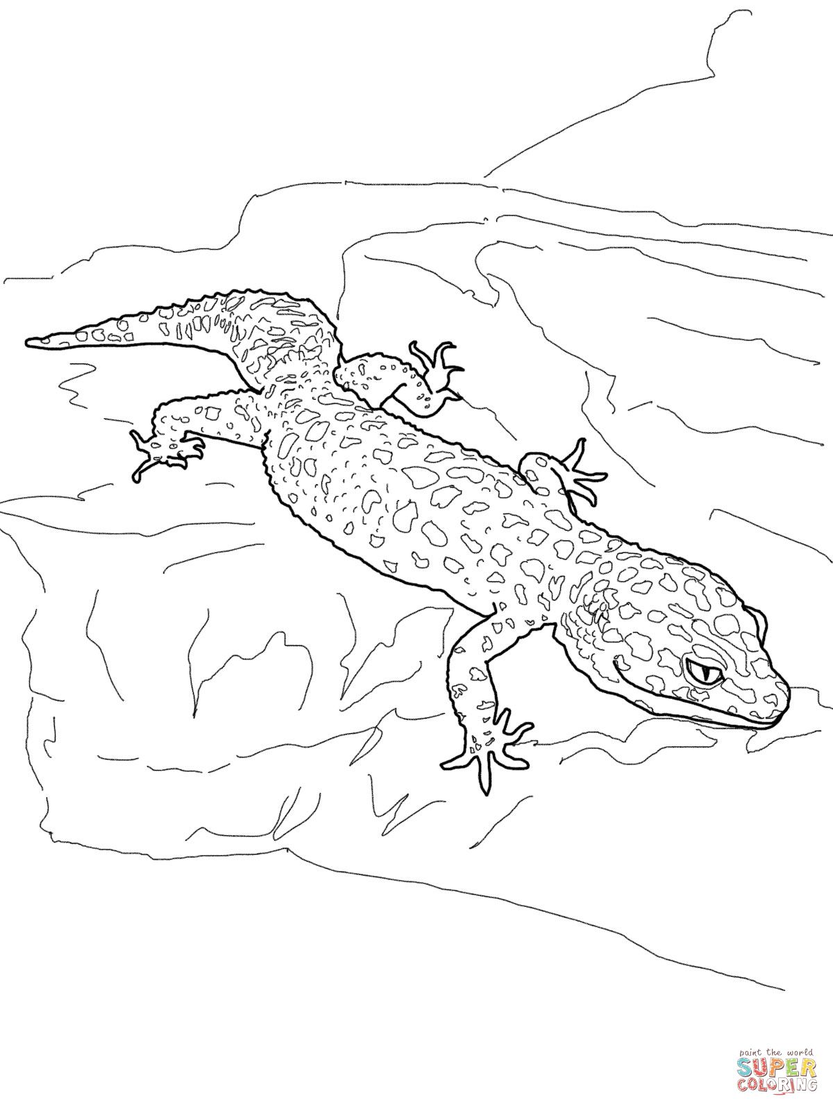 Leopard Gecko Coloring Page Supercoloring Com Cartoon Lizard