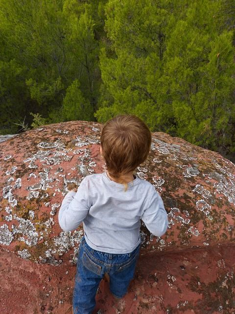 Free Image on Pixabay - Child, Rock, Abyss, Forest