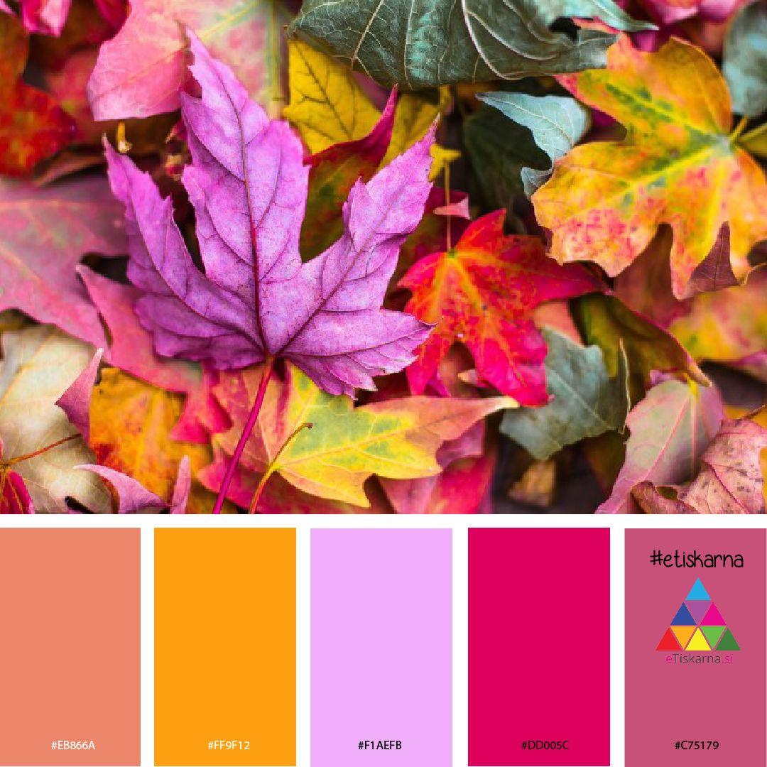 Color palette autumn #2 #autumncolorpalette
