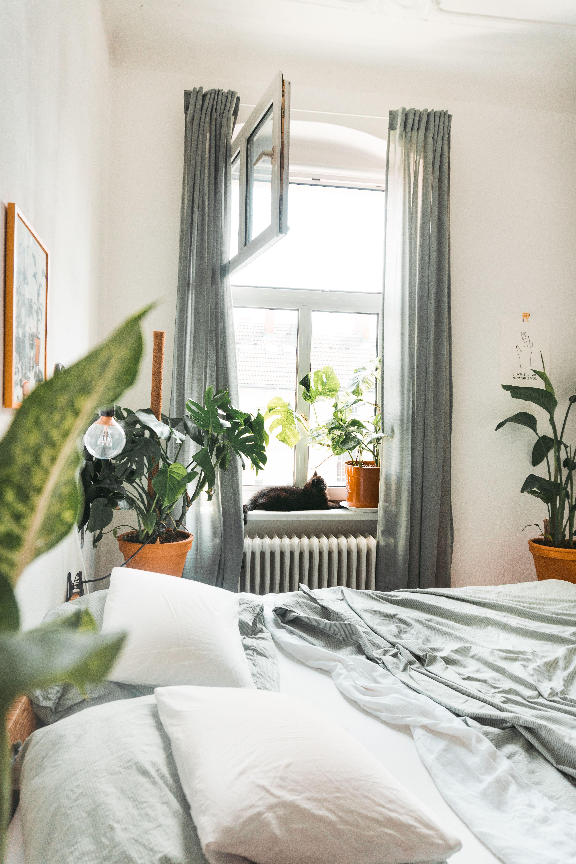 DekoTipps zum WohlfühlWohnen Home decor, Bedroom decor