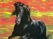 caballos al oleo cuadros (7)