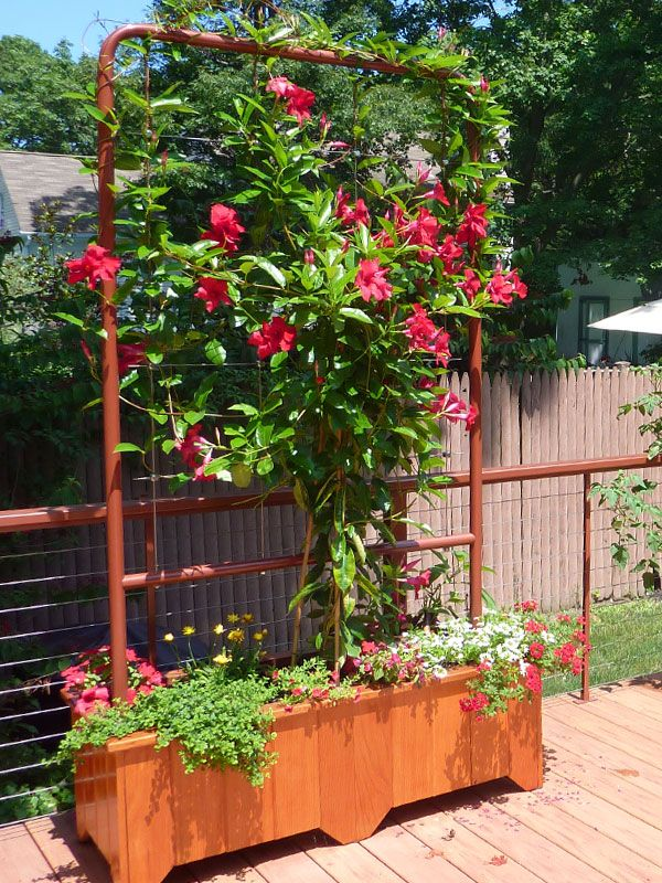 Greenway® Trellis: Free Standing Greenway Trellis In Planter On Deck Setting