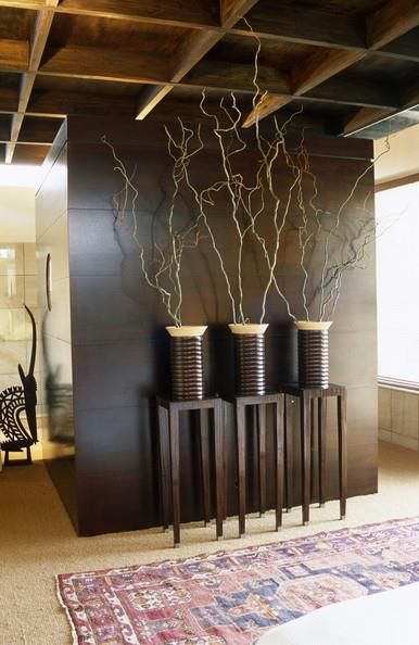 Foyer Entrance Zimbabwe : Contemporary hallway photos african interior design