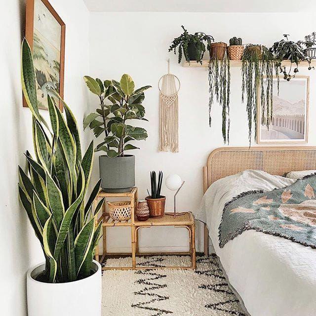 Can you say.. plant goals? Hell yesss 🌿 #bedroomgoals #bedroomideas #bedroomdesign