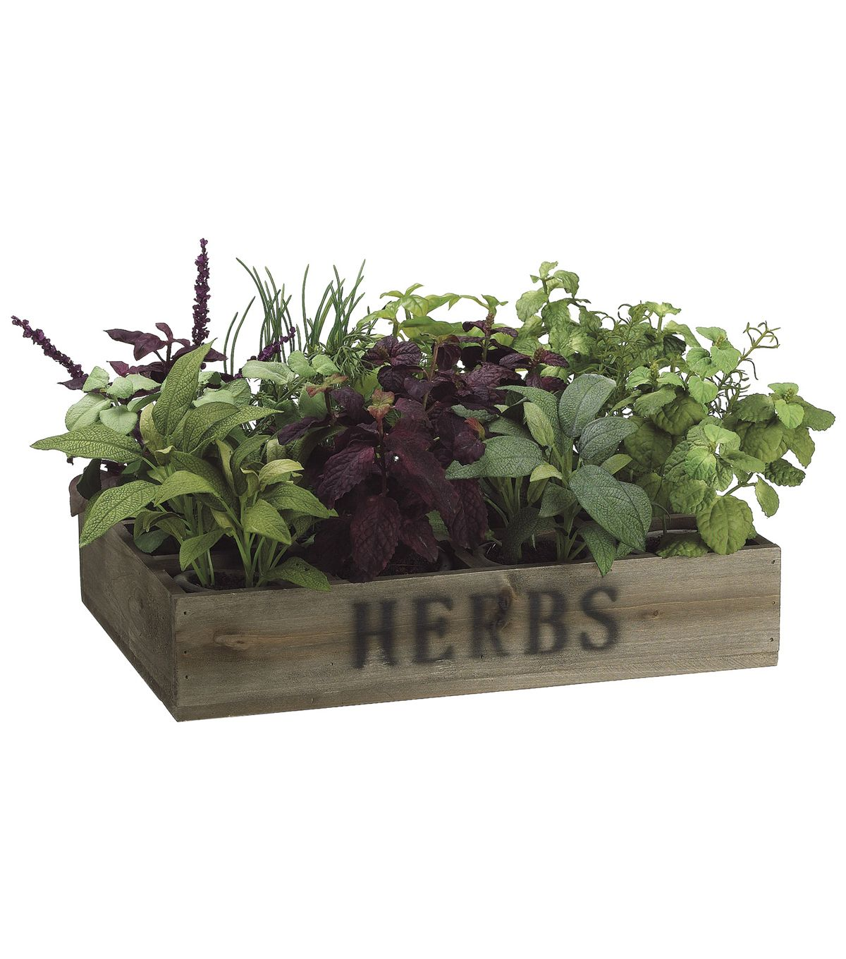 Bloom Room Luxe 9'' Herb Garden In Wood Box-Green | Floral Arrangement | Online Only Product